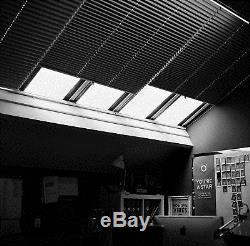 Hasselblad 501C Medium Format Film Camera + 80mm f/2.8 C + A12 Film Back + WLF
